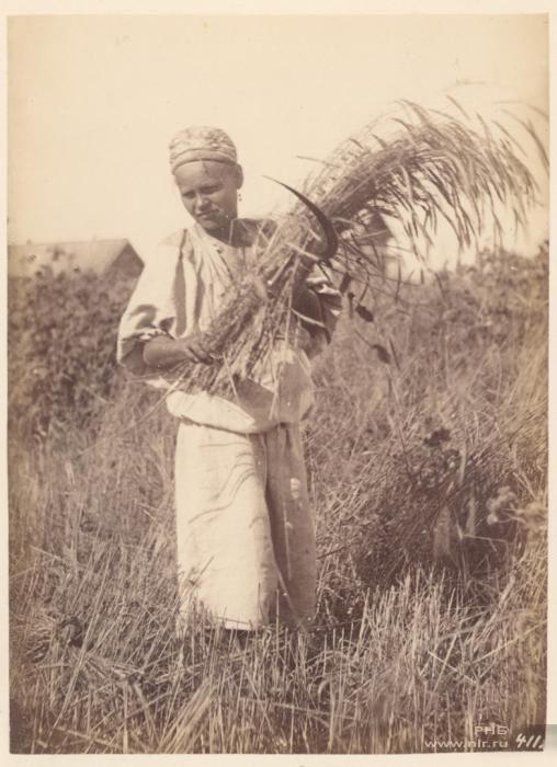 Фотограф Вильям Каррик (1827—1878)   Фотографии ...
