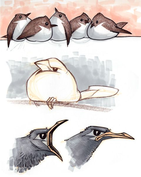 Bird Drawings Sketches | Among these topics are BIRDS and CARS (along with faces, people, dogs ...