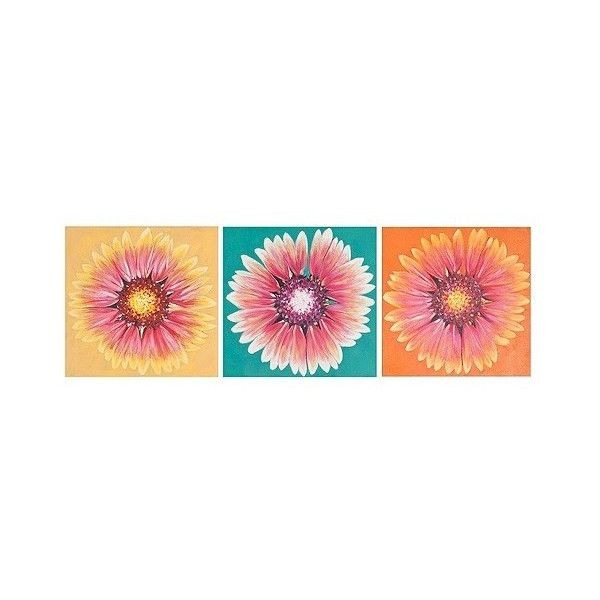 Safavieh Shasta Triptych Wall Art, Multi-Colored (€84) ❤ liked on Polyvore featuring home, home decor, wall art, art, backgrounds, flowers, inspirational wall art, inspirational paintings, sunflower oil painting and sunflower painting