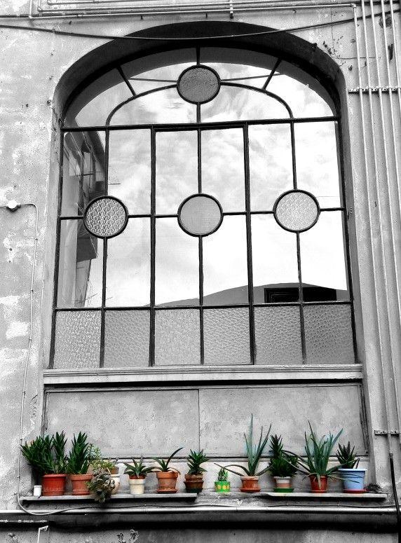 Fenster Hinterhof La Spezia Italien Bymally Hinterhof