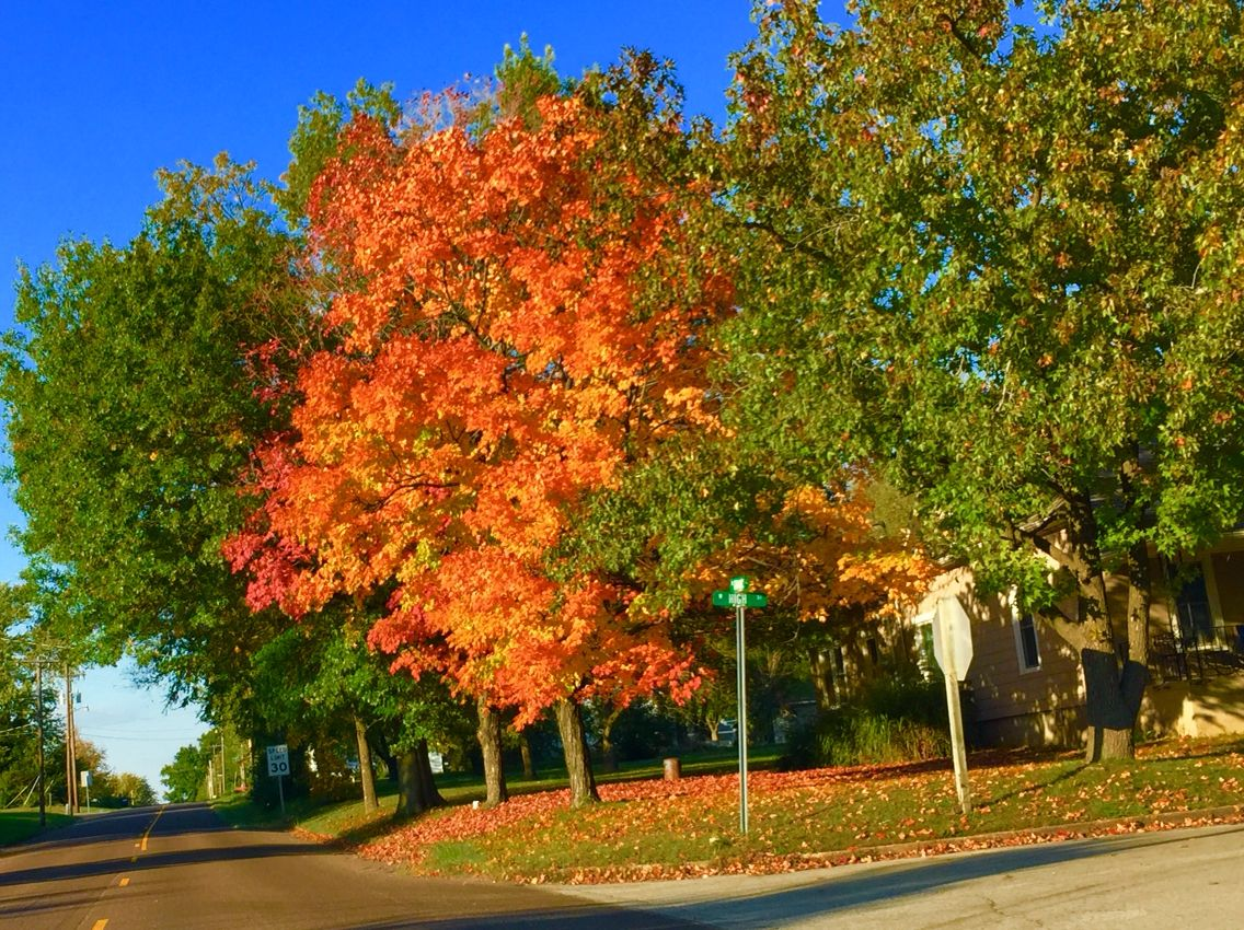 Fall, my town