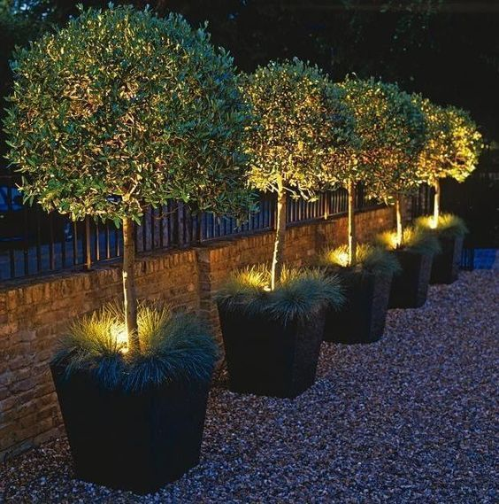 Outdoor Lighting Ideas And Options: Outdoor Lighting Ideas Will Shed Some Light On Your Own