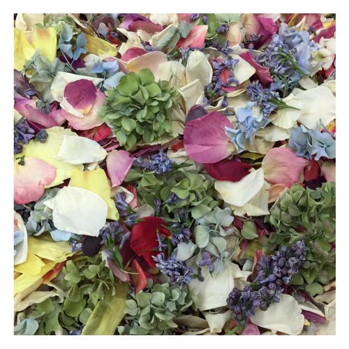 Assorted Flower Petals - 30 cups Preserved Freeze dried Real Flower Petals.  Wedding Petals. Flower Confetti