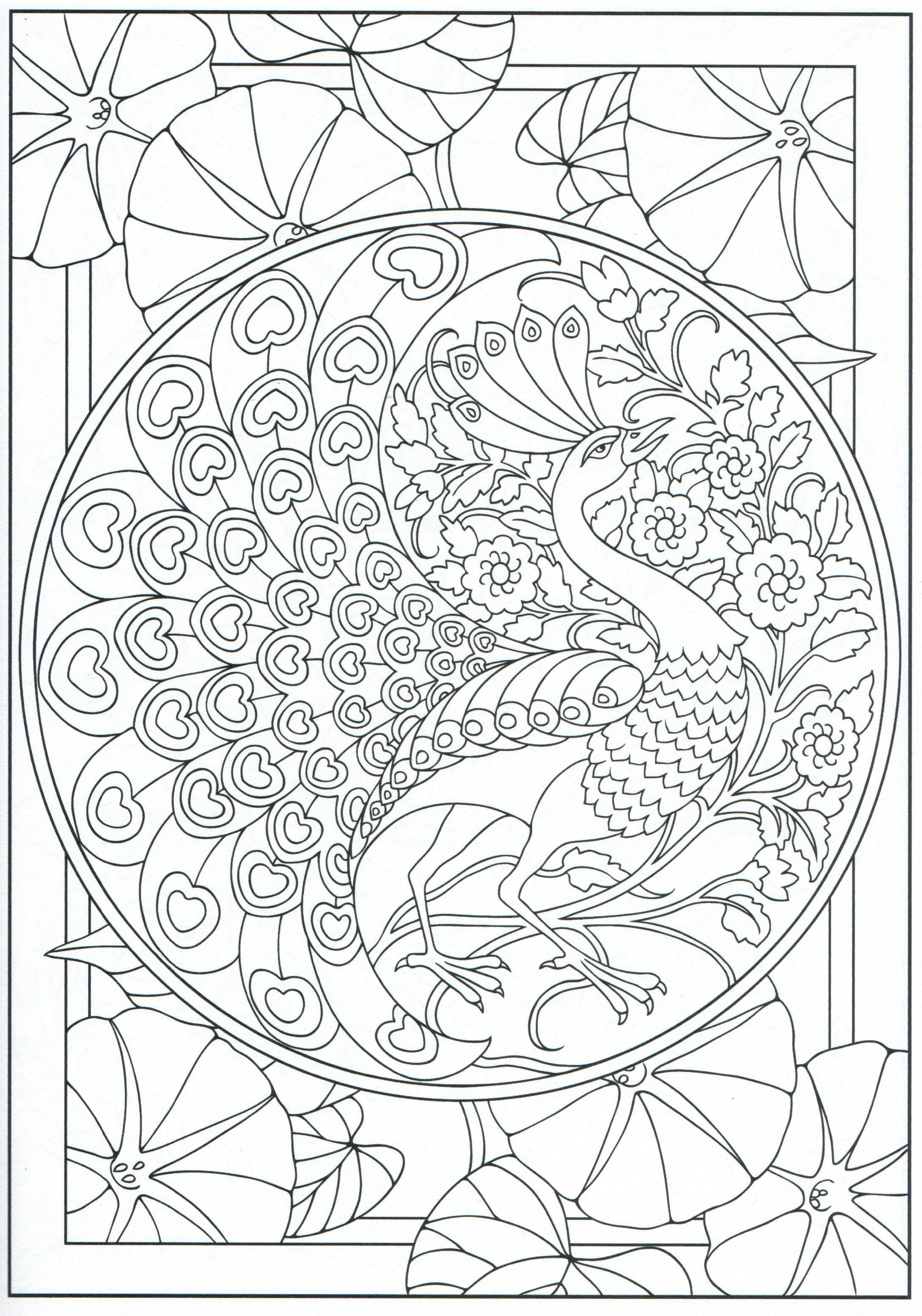 Free coloring pages of peacock feathers coloring everyday printable - Peacock Coloring Page For Adults 11 31