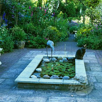 Raised rectangular lily pond google search terrasse garten wasser im garten und garten ideen - Wasserteich im garten ...
