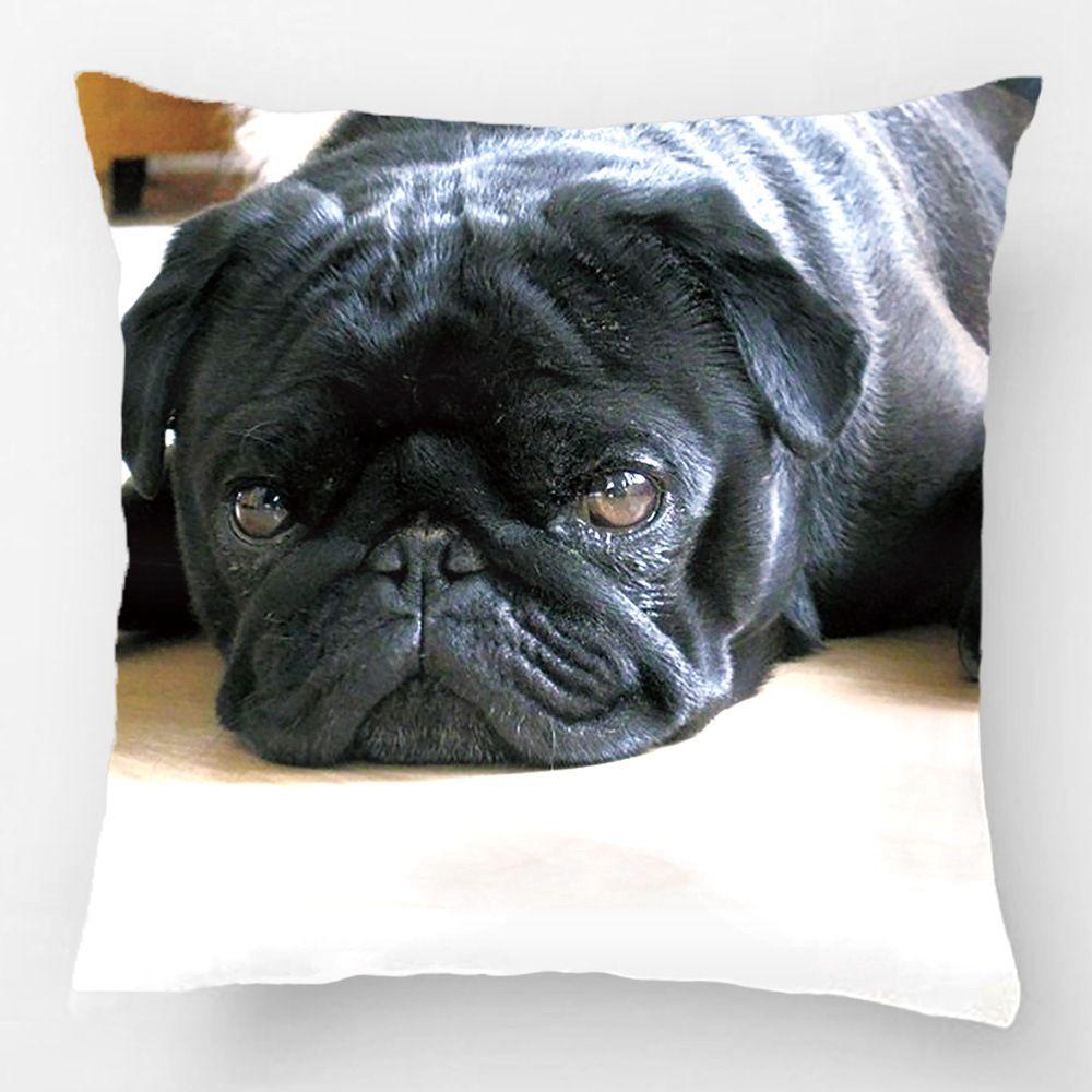 Cute Black Pug Photo Pillow Case Black Pug Puppies Pugs Black Pug