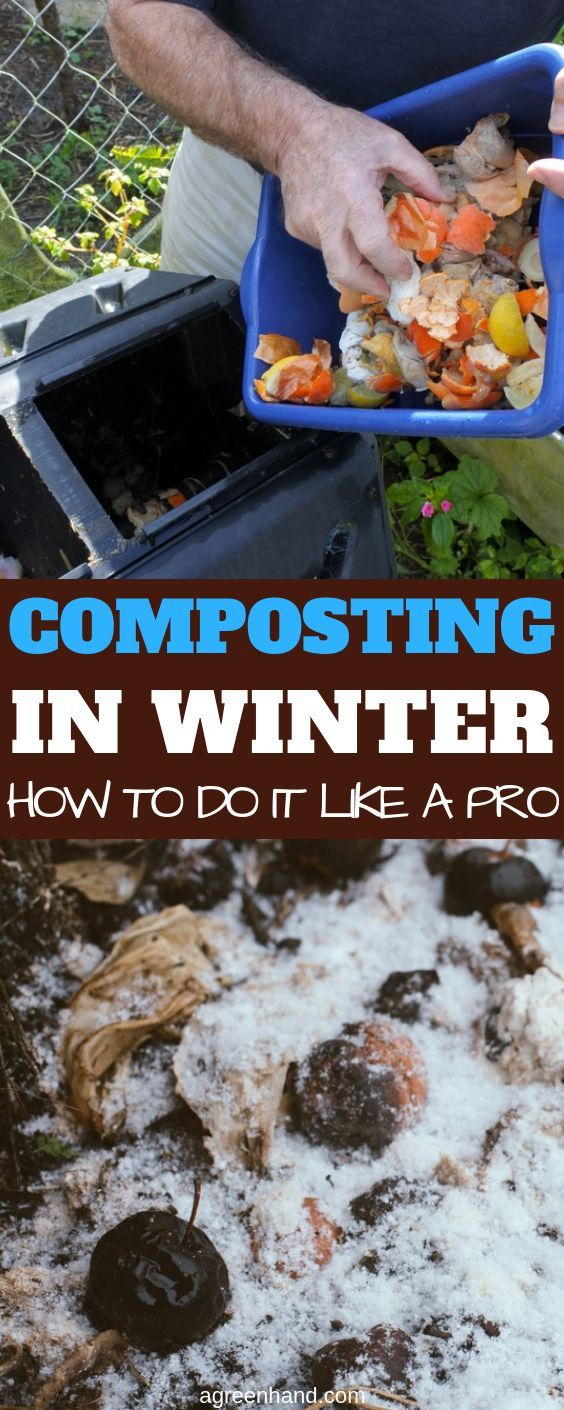 Composting In Winter: How To Do It Like A Pro #wintergardening