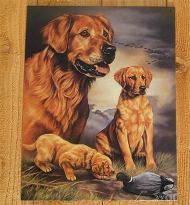 Golden Retriever Puppy Dog Family Duck Animal Art Picture Tin