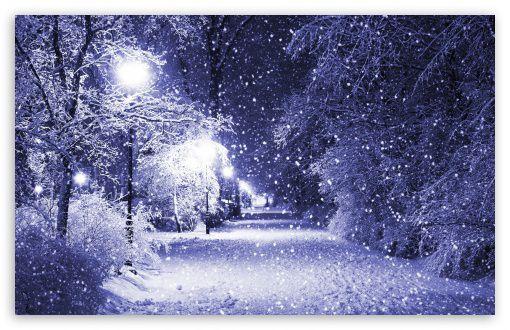 Very Pretty Nighttime Winter Scene Winter Wallpaper Winter Scenery Free Winter Wallpaper
