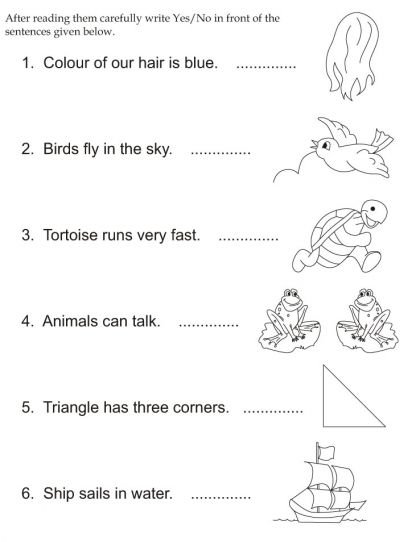 Download english activity worksheet After reading them carefully write Yes/No in front of the sentences given below from bestcoloringpages.com