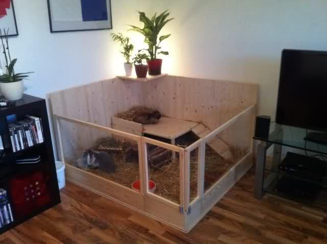 kaninchengehege wohnung google suche kaninchentr ume pinterest kaninchen kaninchenstall. Black Bedroom Furniture Sets. Home Design Ideas