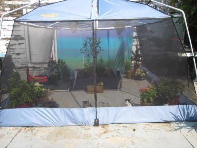 DIY Outdoor Cat Enclosure | Homemade Outdoor Cat Enclosures & DIY Outdoor Cat Enclosure | Homemade Outdoor Cat Enclosures | Cat ...