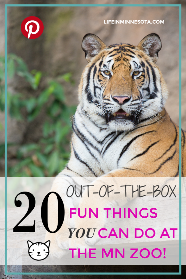 20 Things To Do At The Minnesota Zoo You Didn't Know About