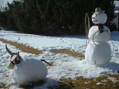 Snow roper