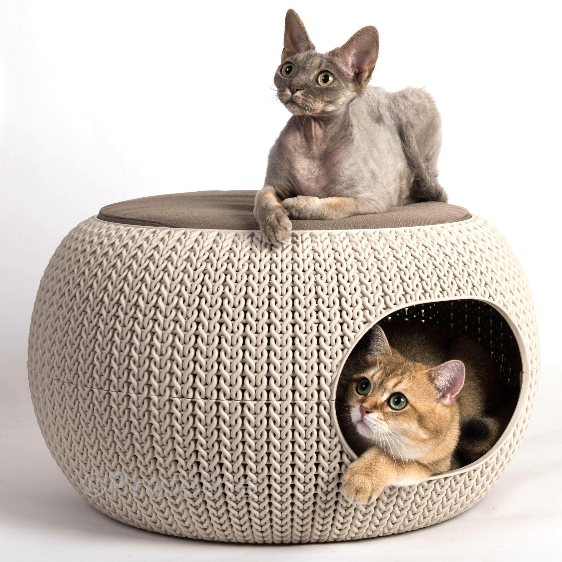Curver Cozy Pet Home Knit with Boris & Maja from
