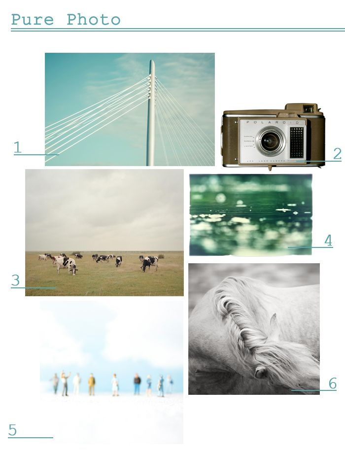 Online art · pure photo beautiful high quality photographs that can be printed really huge