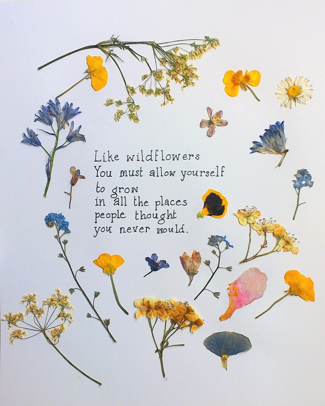 Wildflowers Quotes about flowers blooming, Flower quotes