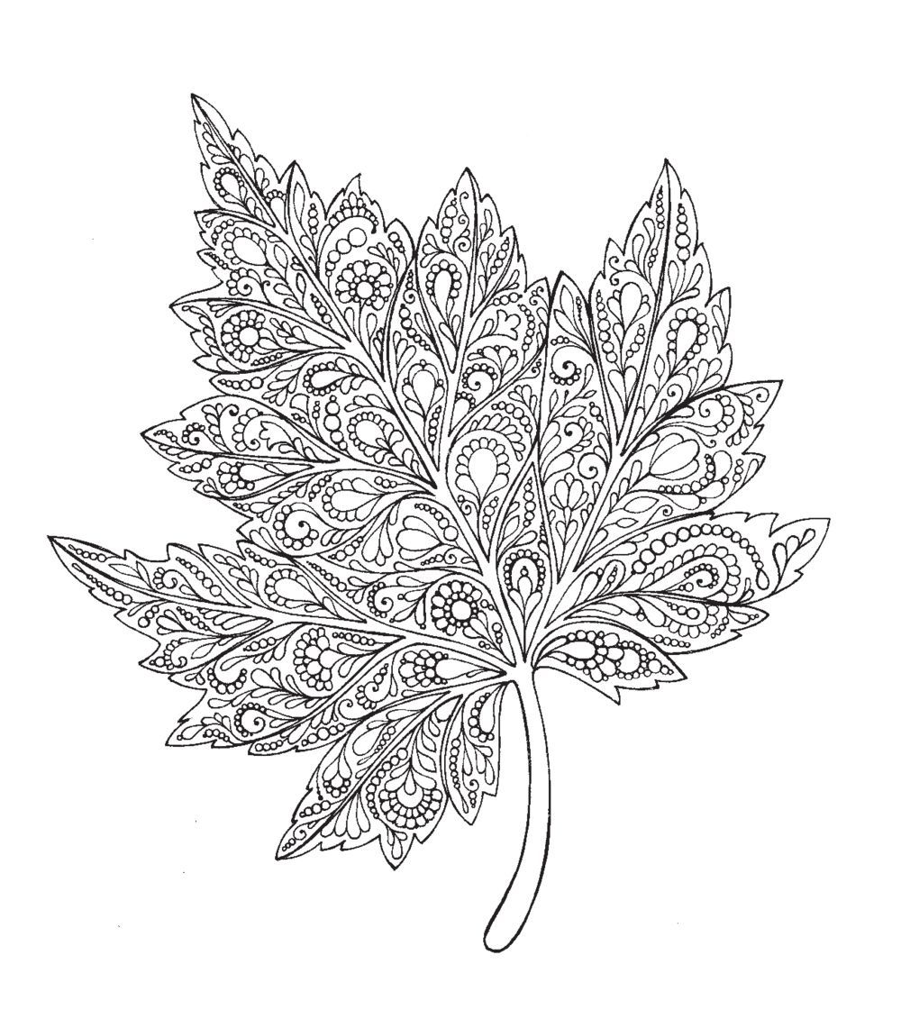 10467607 5 Jpg 1 000 1 141 Pixels Flower Coloring Pages Leaf Coloring Page Cute Coloring Pages