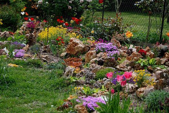 La rocaille en mai pele mele id es pinterest for Idee jardin fleuri