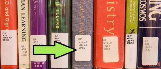 book stochastic flood forecasting system