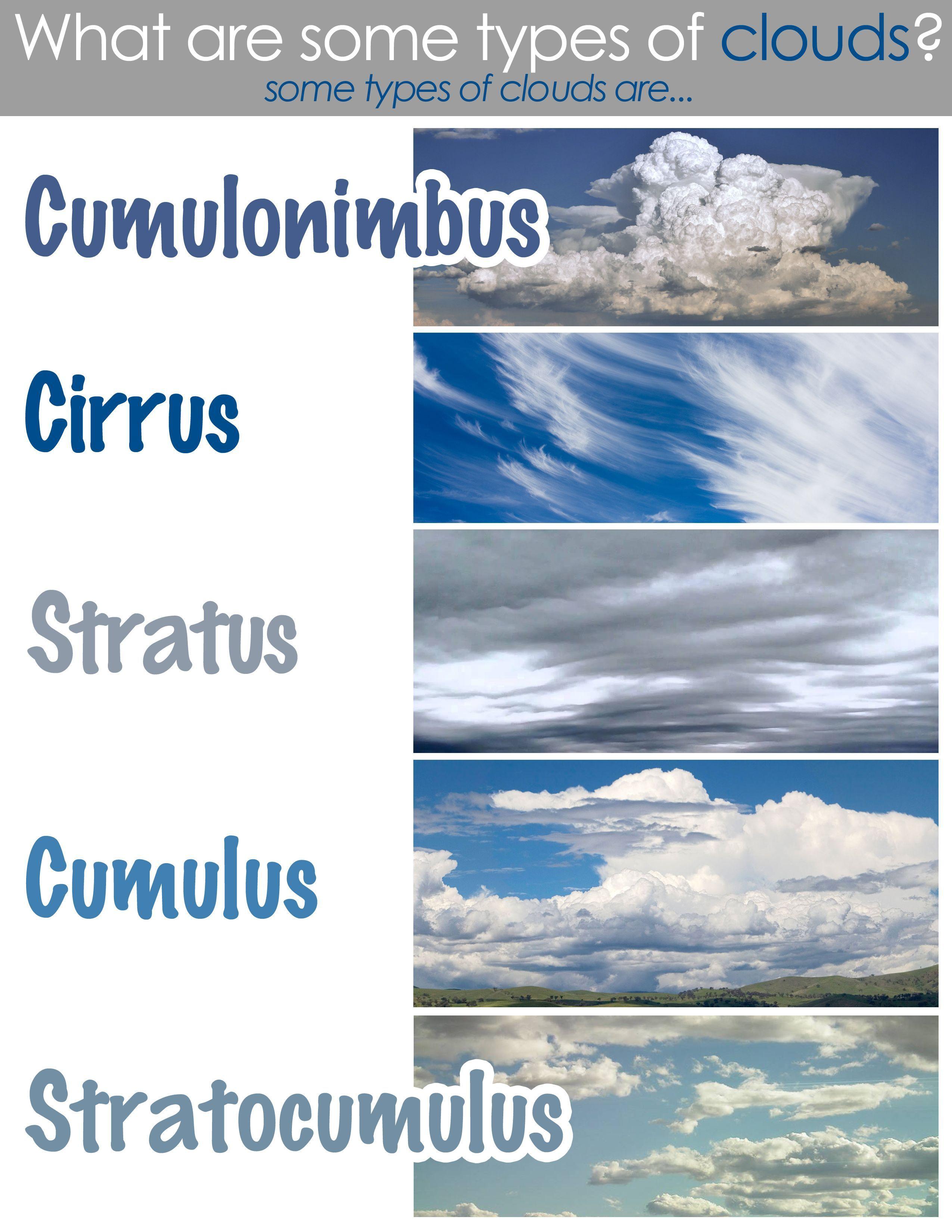 Types Of Clouds Worksheet