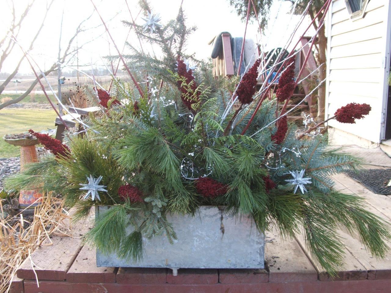 Winter planter display