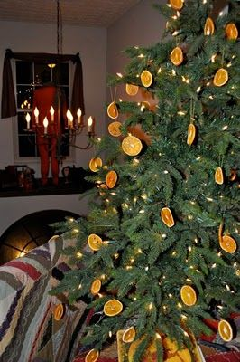 good to keep cats off the tree since they do not like the smell of citrus