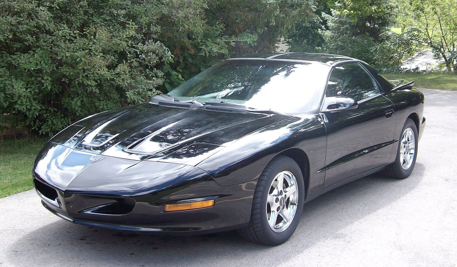 1996 Pontiac Firebird Mine Was Forest Green Had These Same