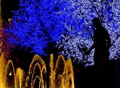 Christmas Lighting in Bcn