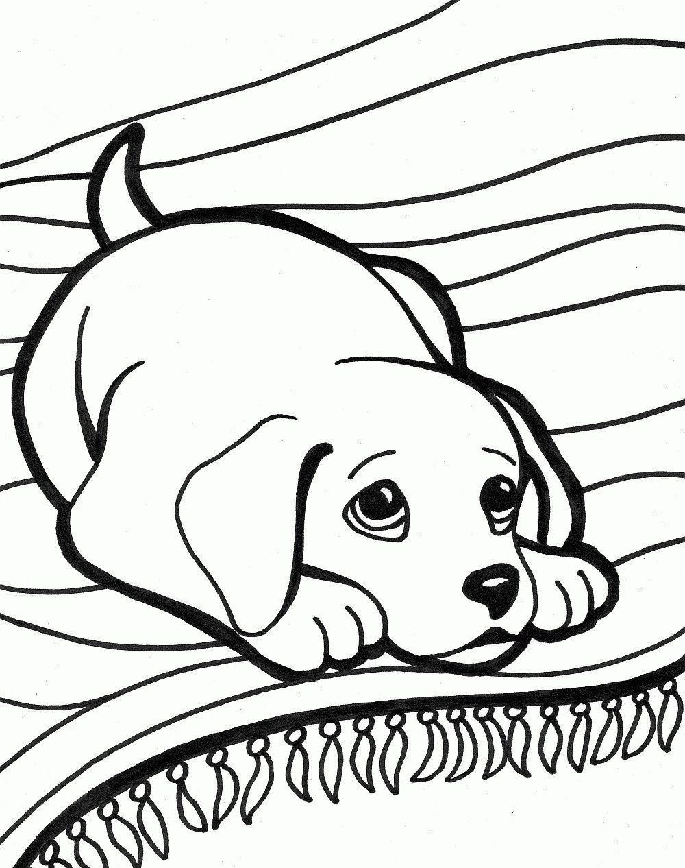 Realistic Dog Coloring Pages Unique Cute Baby Dog Coloring Pages In 2020 Horse Coloring Pages Dog Coloring Book Puppy Coloring Pages