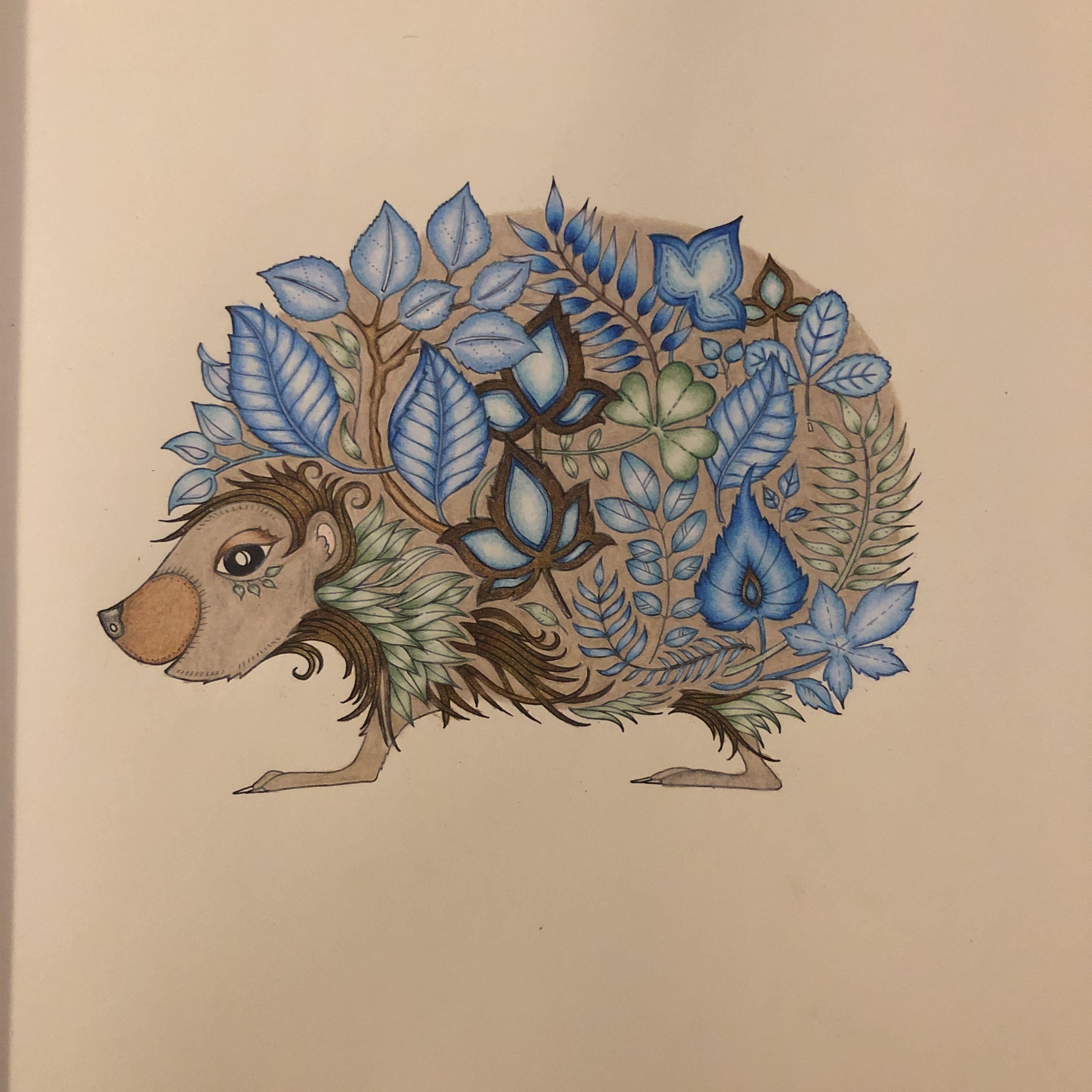 Sonic The Enchanted Hedgehog Johanna Basford Enchanted Forest Enchanted Forest Coloring Book Basford Enchanted Forest