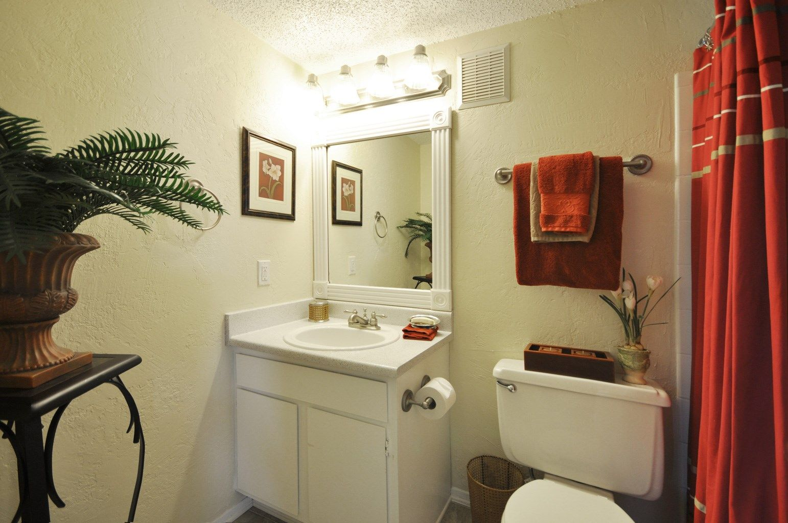 Apartments Near Plano Tx Apartment Renting A House One Bedroom Apartment