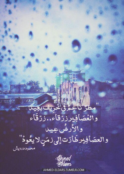 مطر ناعم في خريف بعيد و العصافير زرقاء زرقاء و الأرض عيد و العصافير طارت إلى زمن لا يعود Anger Art I Love Rain Sweet Words