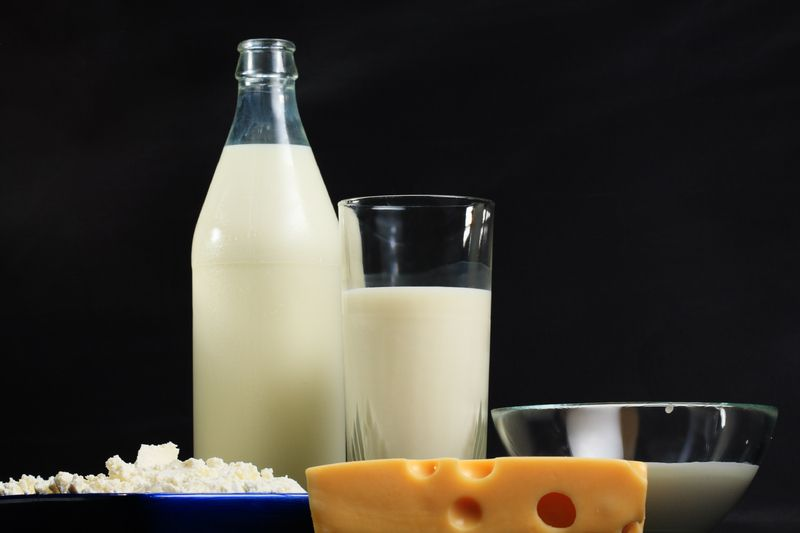"""Evidence Shows Dairy is Cause for Many Health Related Problems    """" Animal proteins in dairy also have been found to leach calcium from the body. Upon consumption, dairy acidifies within the body and extracts calcium from our bones. The calcium acts as a neutralizer for the acid as the body tries to naturally balance its PH level. This process in turn results in being a major cause for cancer, osteoporosis, arthritis and other diseases."""""""