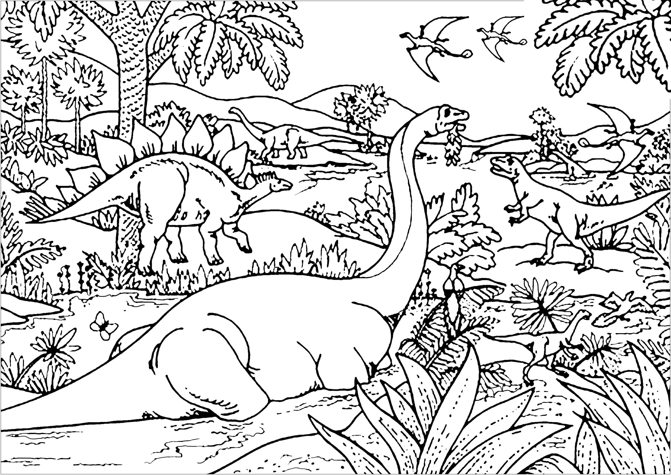 Color All There Different Types Of Dinosaurs Diplodocus Tyrannosaurus Stegosaurus Pterodac Dinosaur Coloring Pages Jungle Coloring Pages Dinosaur Coloring