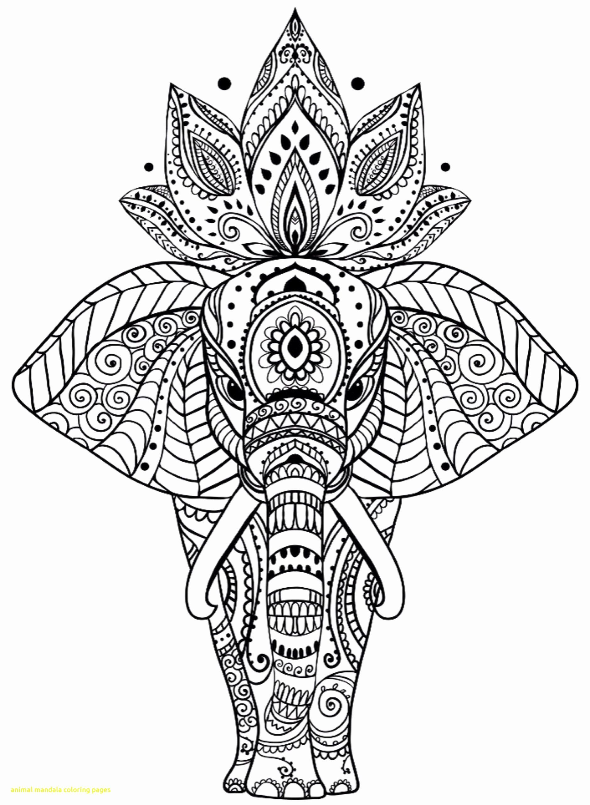 Complex Animal Coloring Pages Best Of Top 37 Magic Mandala Coloring Book For Adults Dungeons And In 2020 Mandala Coloring Pages Elephant Coloring Page Mandala Coloring