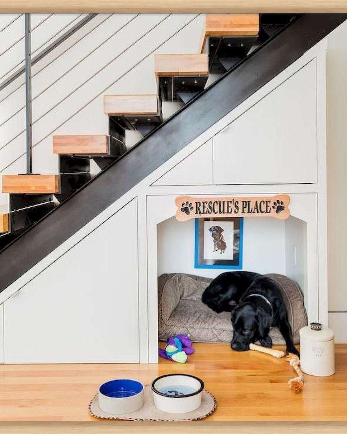 hundebett mit treppe