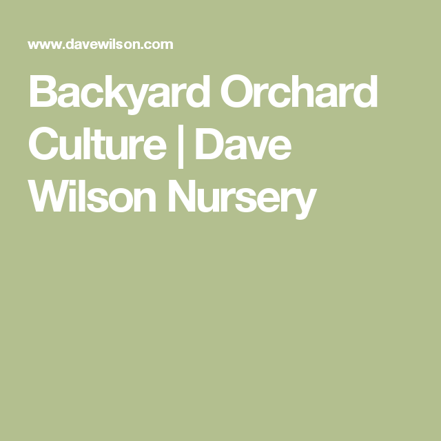 Backyard Orchard Culture | Dave Wilson Nursery - Backyard Orchard Culture Dave Wilson Nursery Backyard