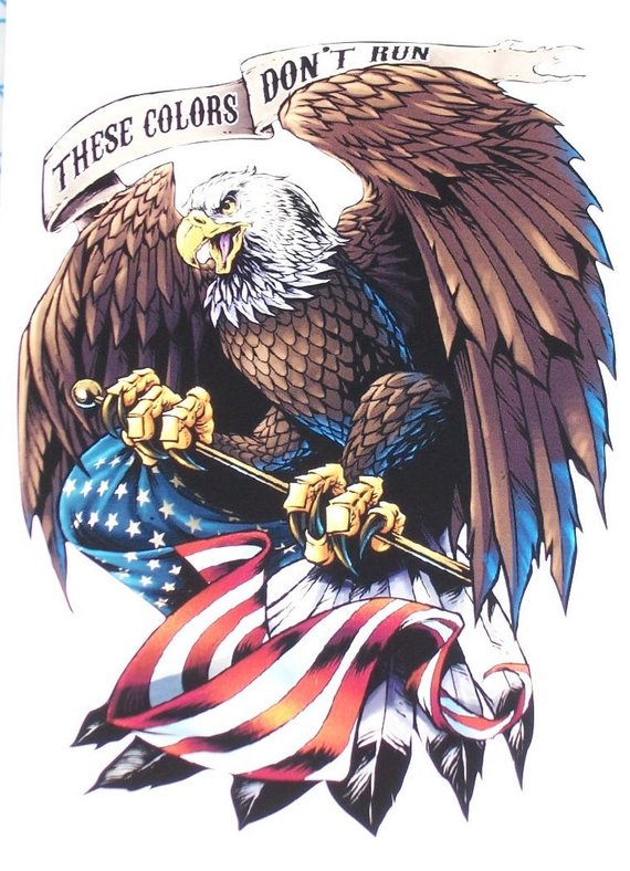 These Colors Dont Run Bald Eagle American Flag 2 Rv