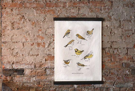 birds on a chart