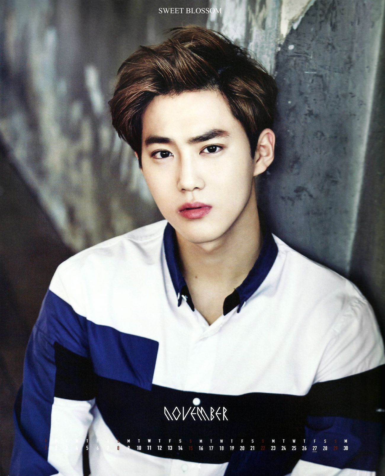 Image result for suho 2015