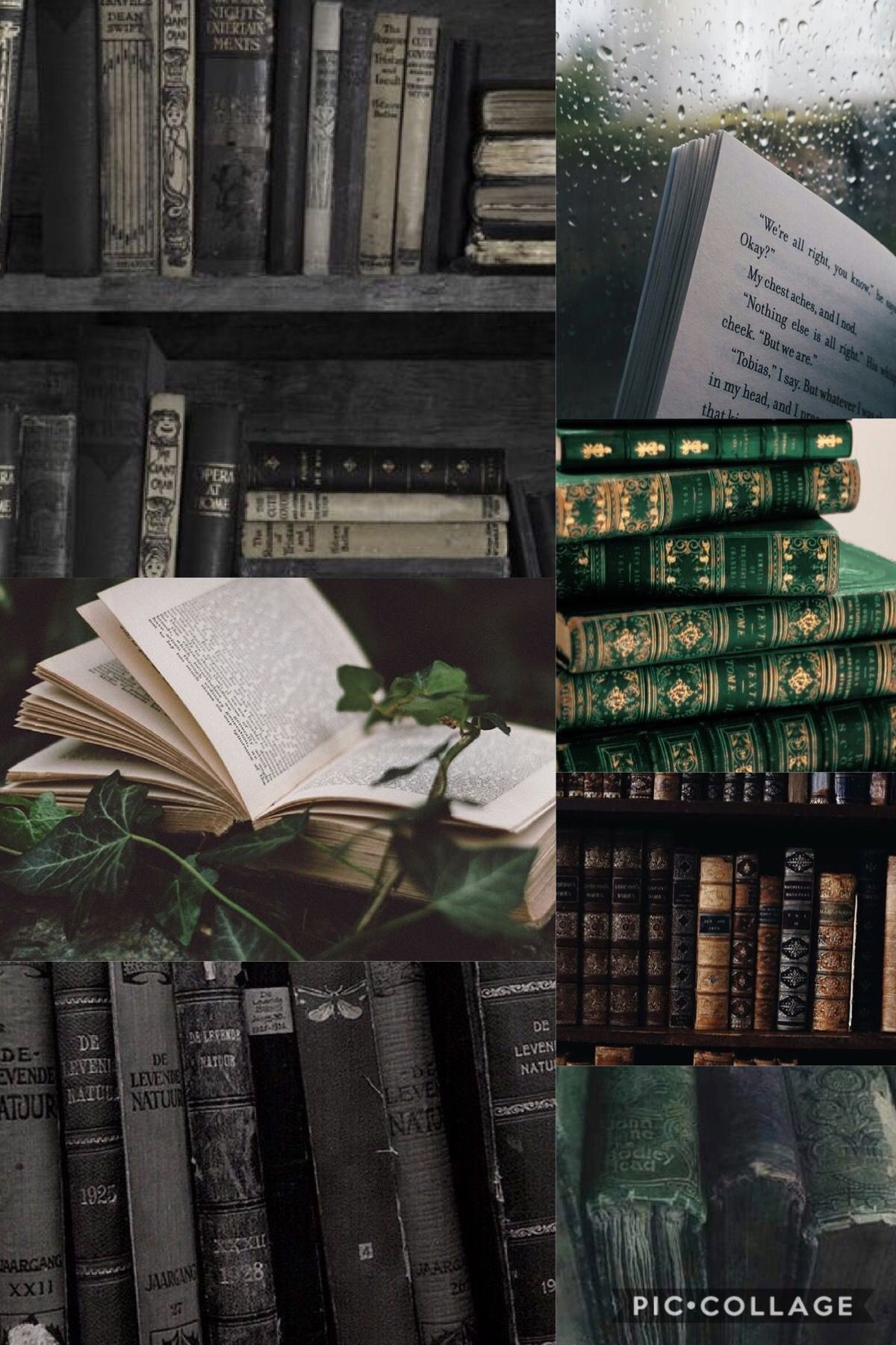 Green Black Book Aesthetic Book Aesthetic Aesthetic Book Cover
