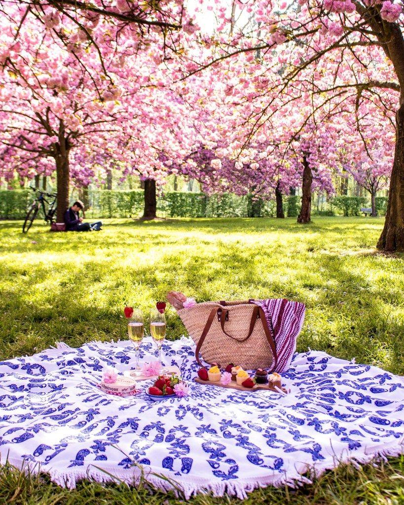 Complete Guide To Blossom Season In Paris The Glittering Unknown Picnic Inspiration Picnic Perfect Picnic