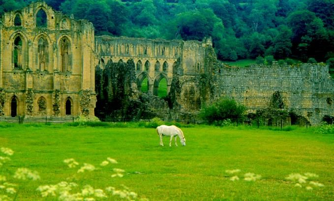 Ruins of Riveaulx Abbey, England