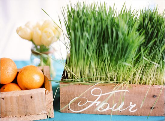 hand painted boxes of grass for table numbers