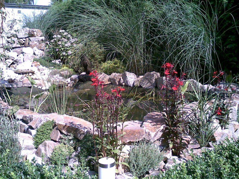 Bau eines Gartenteichs mit Wasserfall und Bachlauf Bauanleitung