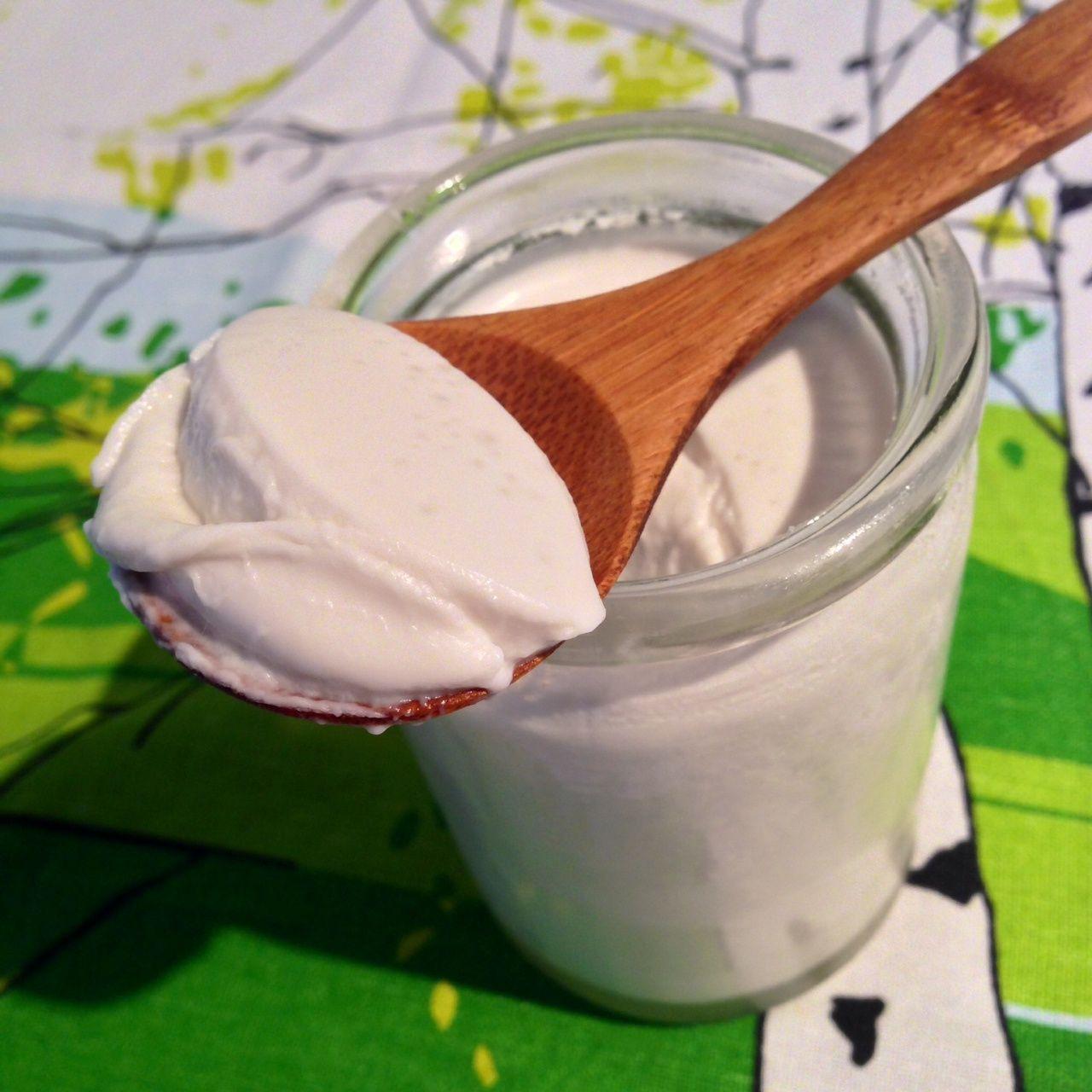 Homemade Coconut Yogurt   Paleo Australia