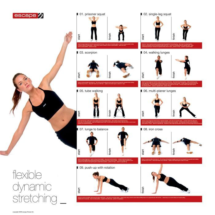 dynamic stretches | dynamic stretching chart :: sports supports
