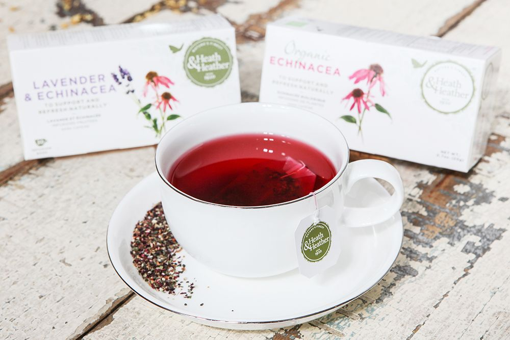 Echinacea Is Traditionally Used To Treat Skin Conditions And Various Other Ailments Herbalism Tea Echinacea