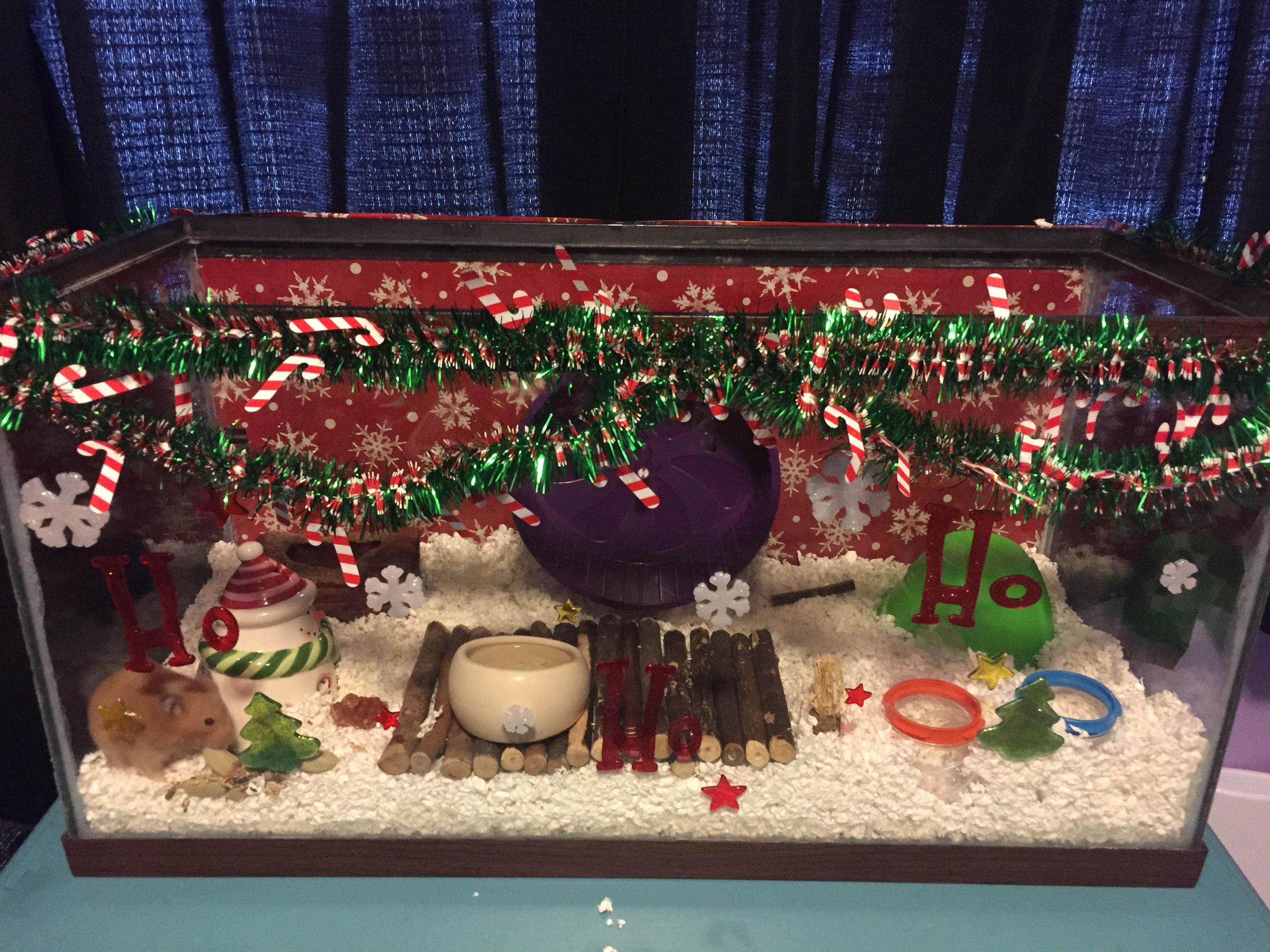 Christmas themed hamster cage/aquarium